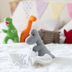 rsz_grey_diplo_and_dinos_on_bed